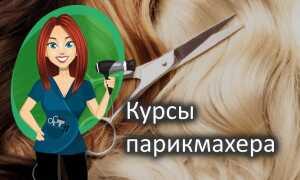 Как выбрать курсы парикмахера в Пензе: отзывы и цены обучения