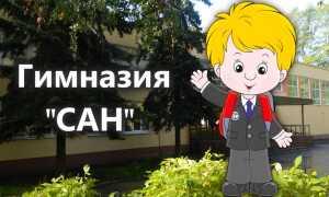 Официальный сайт пензенской гимназии «САН»